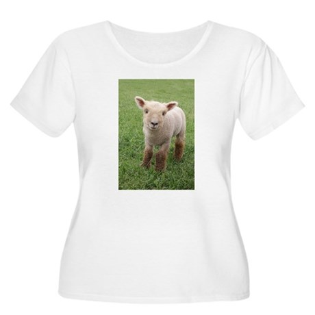 Sweet Lamb Women's Plus Size Scoop Neck T-Shirt