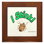 Stink Bug Framed Tile
