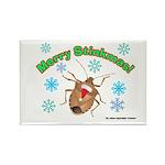 Stink Bug Rectangle Magnet (10 pack)