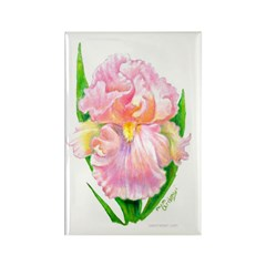 Pink Iris Rectangle Magnet
