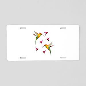 BEAUTIFUL SIGHTS Aluminum License Plate