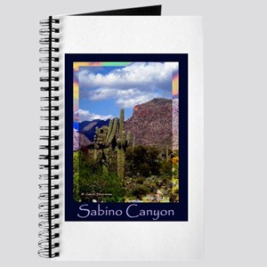 Sabino Canyon Journal