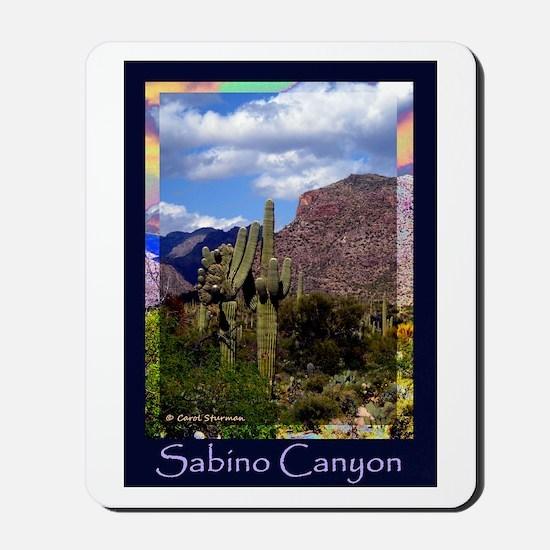 Sabino Canyon Mousepad