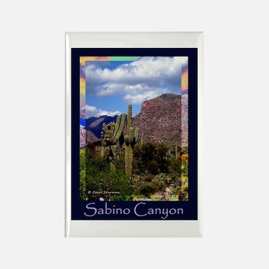 Sabino Canyon Rectangle Magnet