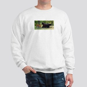 More Team Draft Sweatshirt