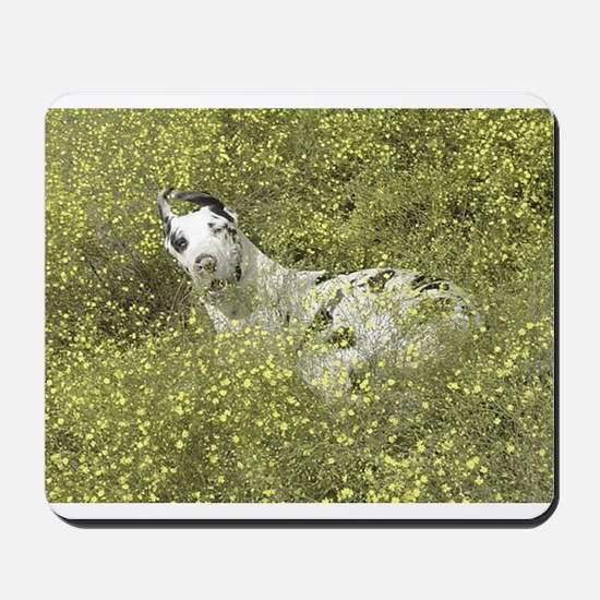 Harlequin Great Dane Meadow Roll Mousepad