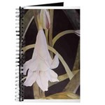 Lily Journal