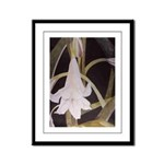 Lily Framed Panel Print