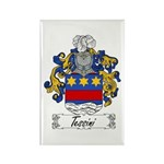 Tessini Coat of Arms Rectangle Magnet