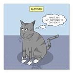 Cat Attitude Square Car Magnet 3