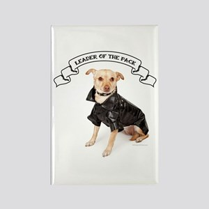 RD Chihuahua Leader Rectangle Magnet