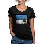 Simple Pleasures Women's V-Neck Dark T-Shirt