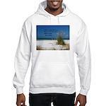 Simple Pleasures Hooded Sweatshirt