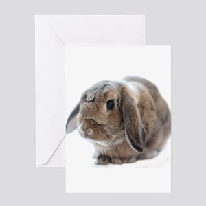 Love Rabbit Greeting Card