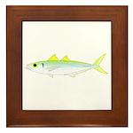 Green Jack Mackerel Framed Tile