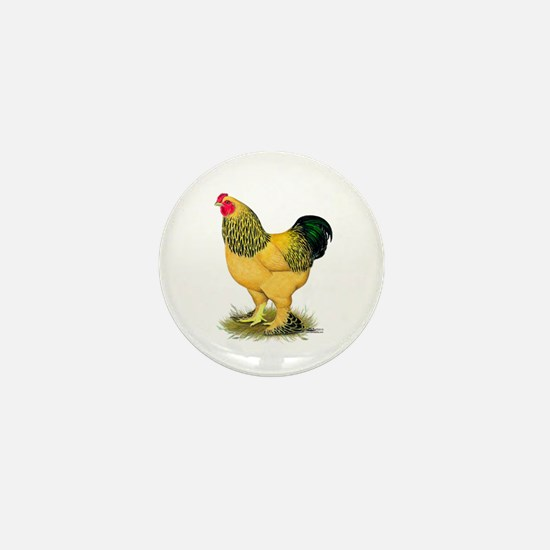 Brahma Buff Rooster Mini Button