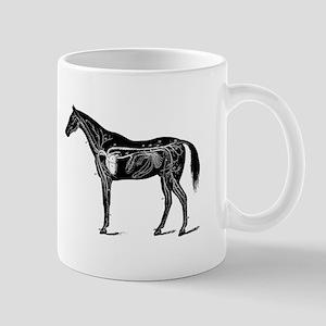 Horse's circulatory system, Anatomy of the ho Mugs