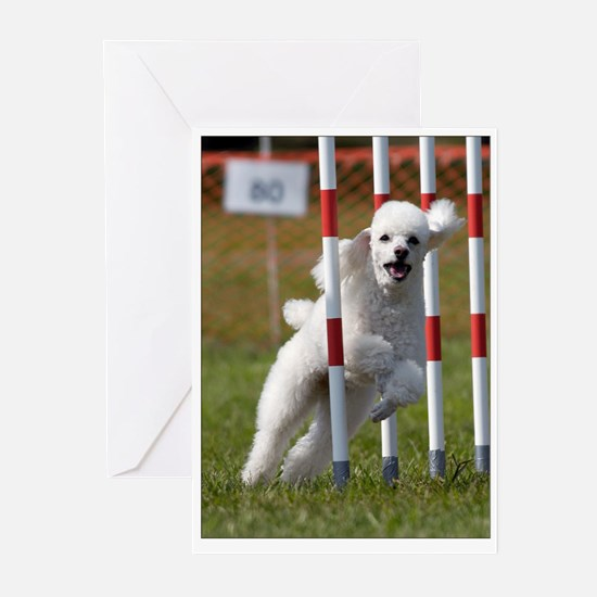 Weaving Poodle Greeting Cards