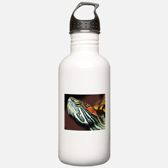 Red Eared Slider Close Water Bottle