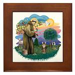 St Fran (ff) - Brown Tabby Cat Framed Tile