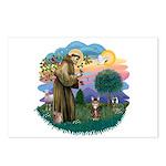 St Fran (ff) - Brown Tabby Cat Postcards (Package
