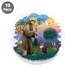 St. Fran (ff) - Maine Coon (#9) 3.5