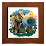 St. Fran (ff) - Maine Coon (#9) Framed Tile