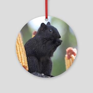 Black squirrel Round Ornament