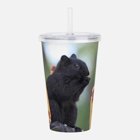 Black squirrel Acrylic Double-wall Tumbler