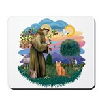 StFran(f)-Abyssin. (rd) Mousepad