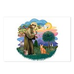 StFran(f)-Abyssin. (rd) Postcards (Package of 8)