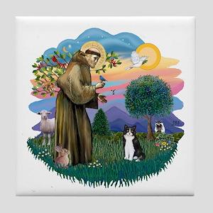 St Fran (ff) - Black/White cat Tile Coaster