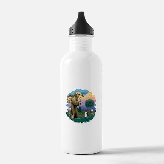 St Fran (ff) - Black/White cat Water Bottle