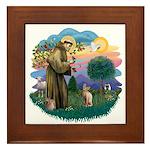 St Francis - Sphynx (fawn) Framed Tile