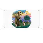 St Francis - Sphynx (fawn) Banner