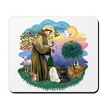 St Fran (ff) - 3 Persian Cats Mousepad