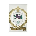 AYOTTE Family Crest Rectangle Magnet (10 pack)