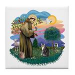 St Fran (f) - Tabby & White Tile Coaster