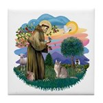 StFran(f)-Abyssinian (bl) Tile Coaster