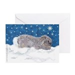 Rabbit in Winter Snow Holiday Cards (Pk of 20)