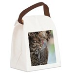 Northern Flicker Canvas Lunch Bag