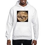 Nickel Buffalo-Indian Hooded Sweatshirt