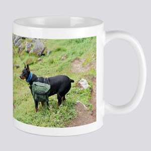 Photographer's Companion Mug