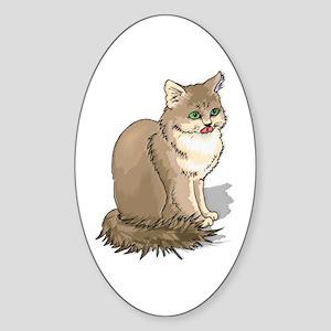Ragdoll Cat Portrait Oval Sticker
