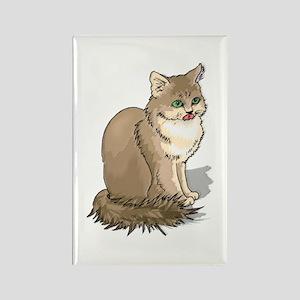 Ragdoll Cat Portrait Rectangle Magnet