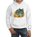 Tabby Cat Drawing Hooded Sweatshirt