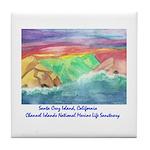 Santa Cruz Island, California Tile Coaster