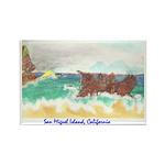San Miguel Island, California Rectangle Magnet (10