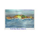 Santa Rosa, California Rectangle Magnet (100 pack)