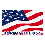 Born in the USA Sticker